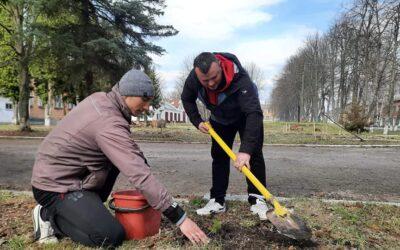 Посади дерево – збережи довкілля